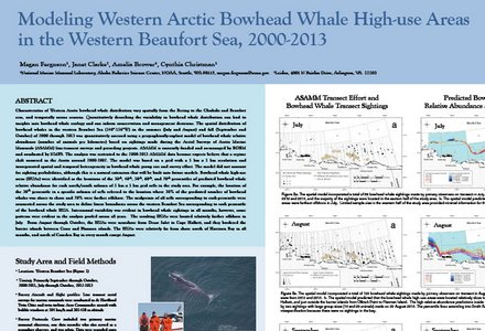 Modeling arctic bowhead
